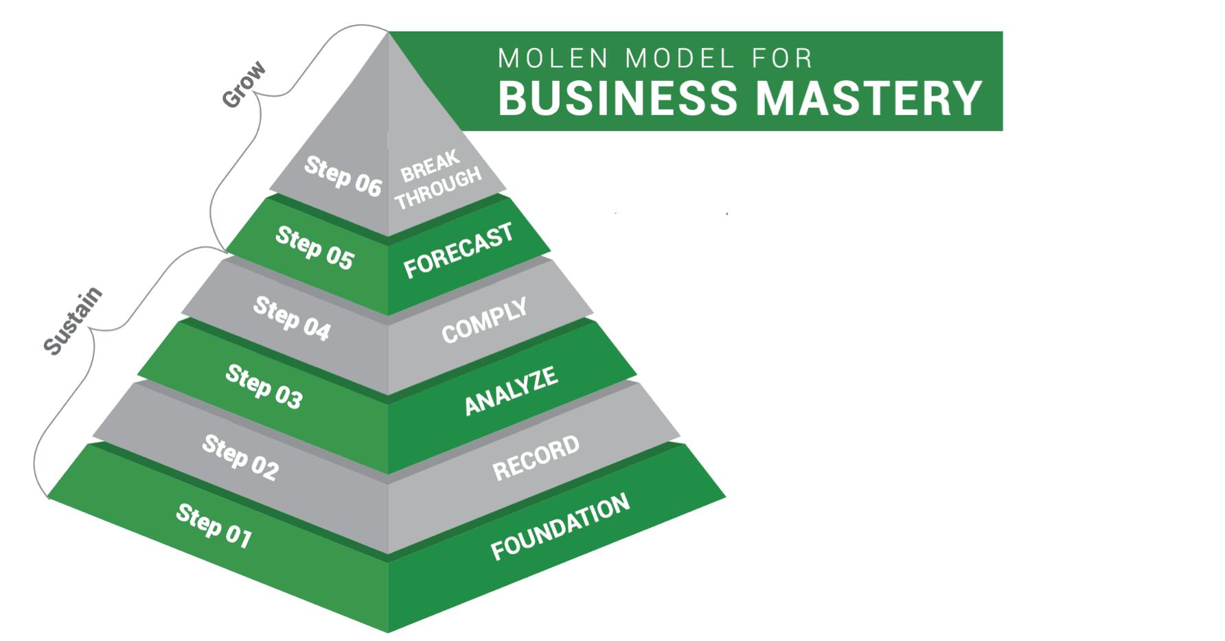 Molen Model for Business Mastery