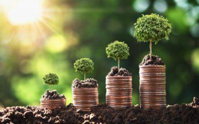 Grow Your Income